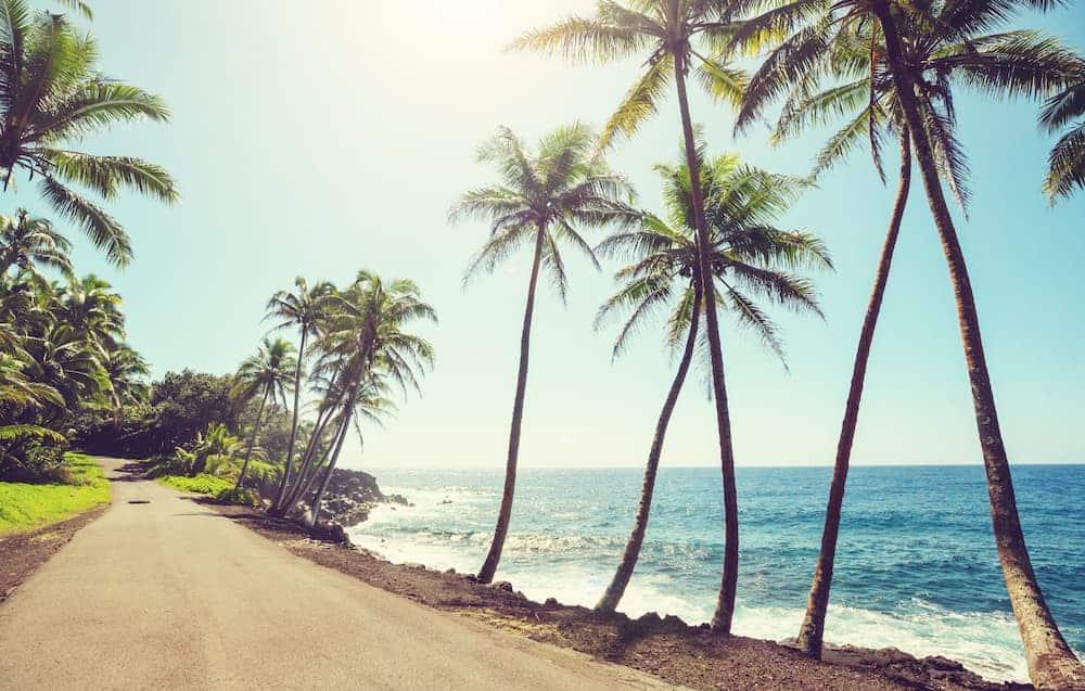 hawaii NTQMZLK 1